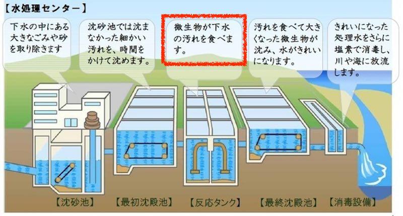 下水処理の仕組み 八代市キッズサイトより