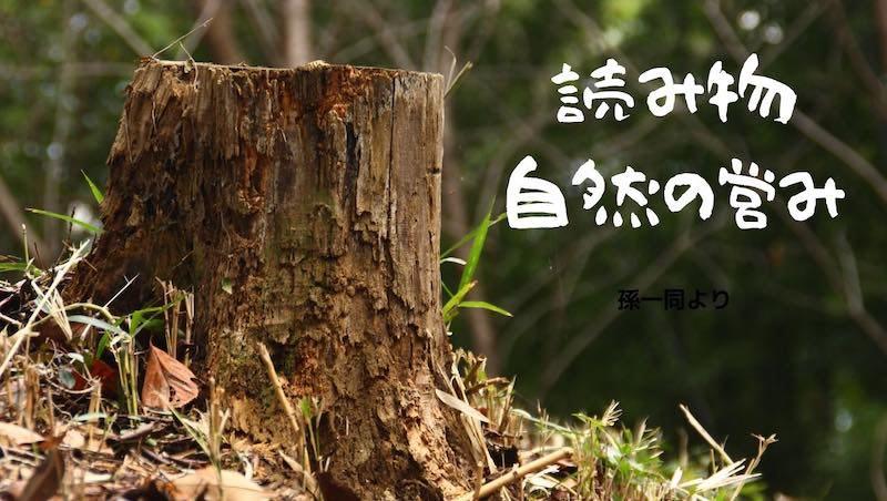 【読み物】自然の営み