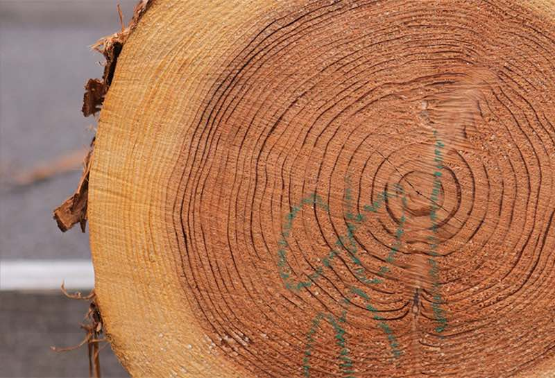 音楽を聞きながらゆっくりと乾燥される空気がうまい家®︎の音響熟成®︎木材
